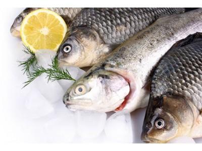 Купить рыбу в Минске